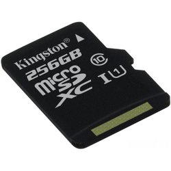 Карта памяти Kingston SDCS/256GBSP (SDCS/256GBSP)